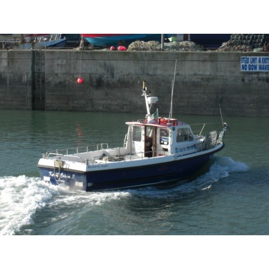 31' Mitchell Sea Angler 'Kerry Coleen' WELL MAINTAINED P License Vessel